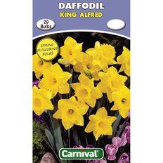 Carnival Daffodil Bulb King Alfred 20 Pack