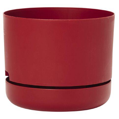 Decor Springtime Pot 215mm Deep Red
