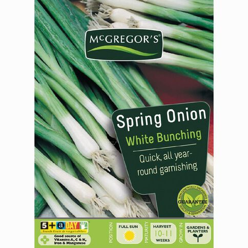 McGregor's Bunching White Spring Onion Vegetable Seeds