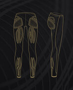 MCS Basketball Compr. Tights