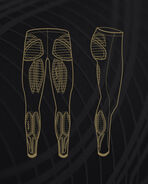 MCS Basketball Comp Tights