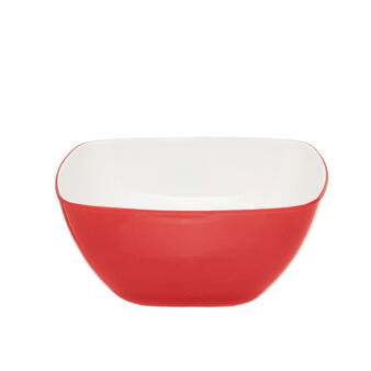 Two-tone plastic salad bowl