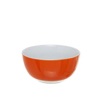 Scodella in porcellana arancione