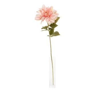 Sprig of pink dahlias
