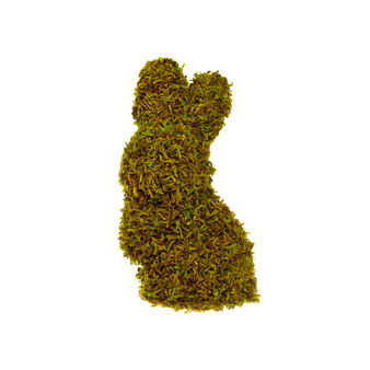 Stylised moss rabbit