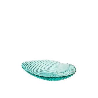 Glass shell plate