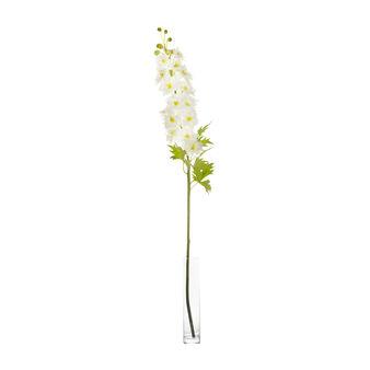 Fiore delphinium bianco