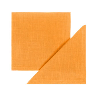 2-pack napkins in 100% cotton