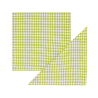 2-pack yarn-dyed check napkins in 100% cotton