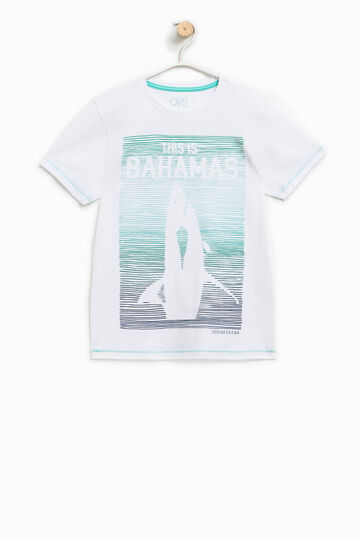 Printed T-shirt in 100% cotton, White/Light Blue, hi-res