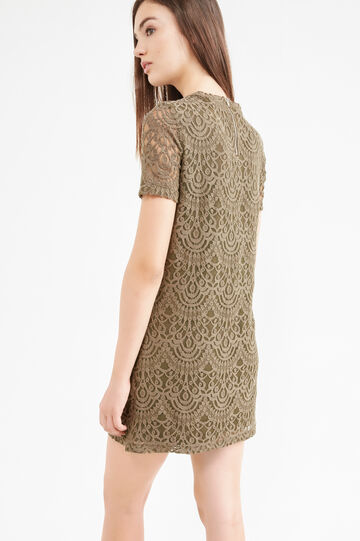 Solid colour stretch cotton lace dress, Army Green, hi-res