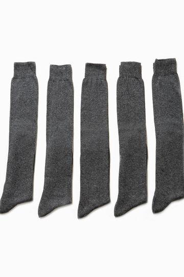 Pack de cinco pares de calcetines largos