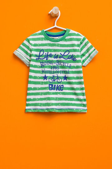 Striped T-shirt with printed lettering, White/Green, hi-res
