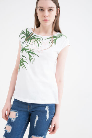 Printed T-shirt in 100% cotton, Green, hi-res