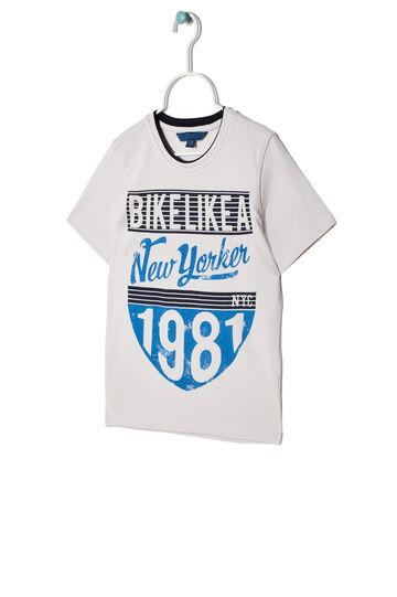 Printed T-shirt in 100% cotton, Light Grey, hi-res