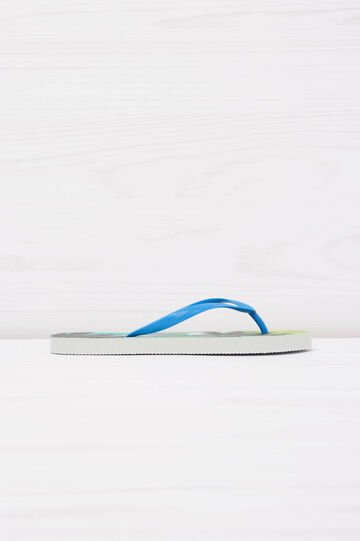 Thong sandals with palm tree print, Blue, hi-res