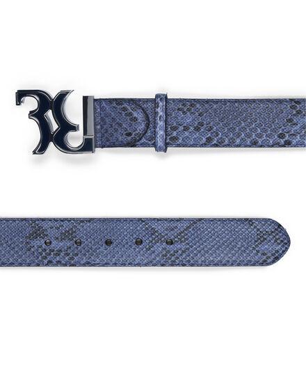 Belt 065
