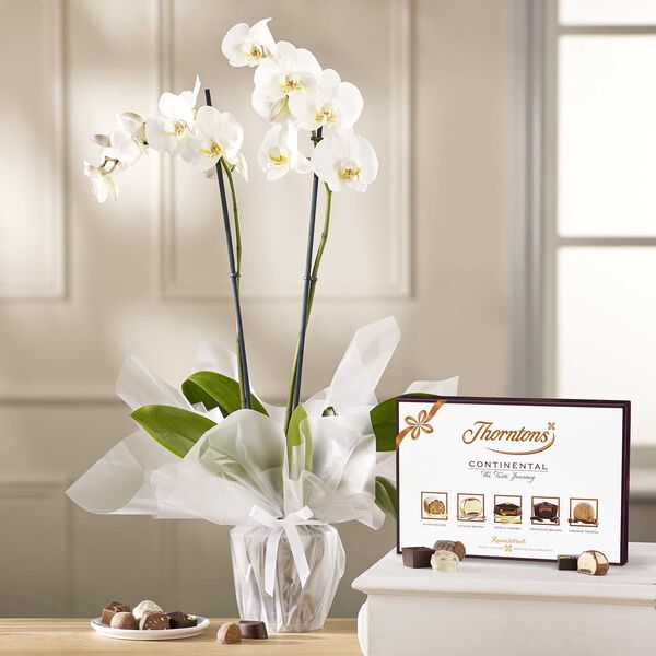 White Orchid & ContinentalChocolate Box