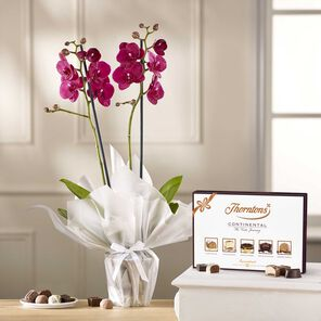 Pink Orchid & Continental Chocolate Box