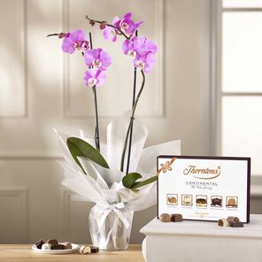 Lilac Orchid with 142g Continental