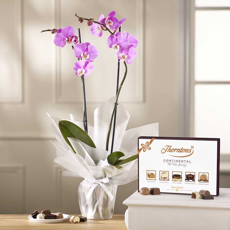 Lilac Orchid & ContinentalChocolate Box