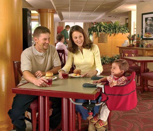 Take the Caddy Hook On Chair with you when you travel so baby always has a comfortable place to sit at restaurants