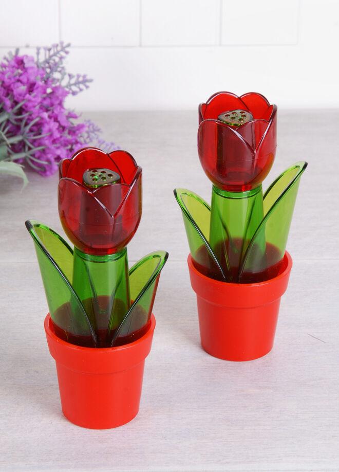 Queen's kitchen Akrilik Saksıda Çiçek Tuz/Biber Takımı