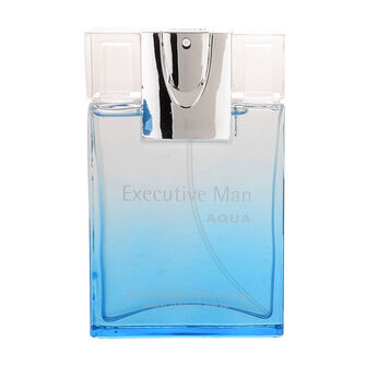 Laurelle Parfums Executive Man Aqua EDT Spray 100ml, 100ml, large