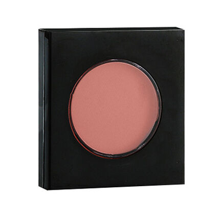Fashionista Blush 2.5g, , large