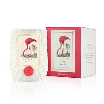 Ted Baker Residence Home Candles 250g Miami, , large