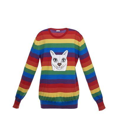 Cat Sweater Rainbow