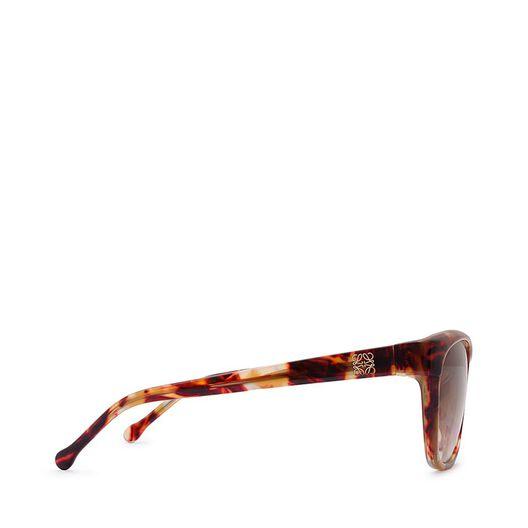 LOEWE Lleo Sunglasses Havana all