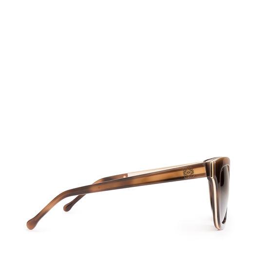 LOEWE Torrenova Sunglasses Havana all