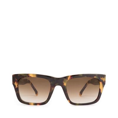LOEWE Llonga Sunglasses Havana/Green front