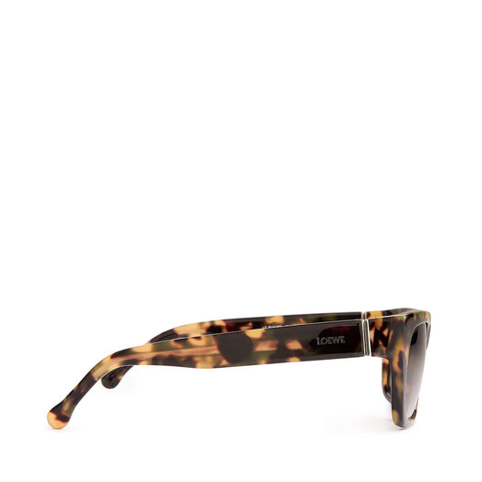 LOEWE Llonga Sunglasses Havana/Green all