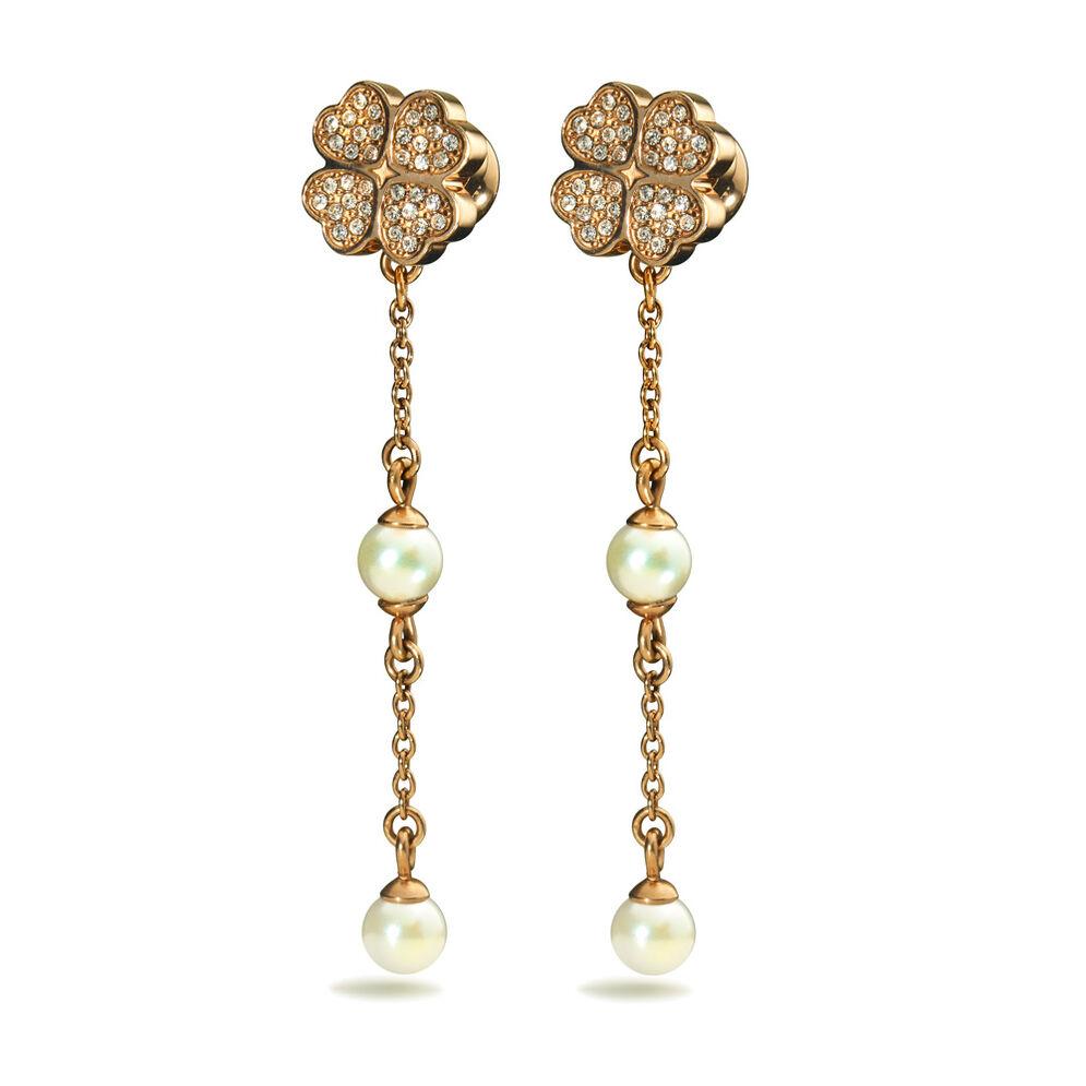 Eternal Heart Rose Gold Plated Long & Short Stone Earrings, , hires