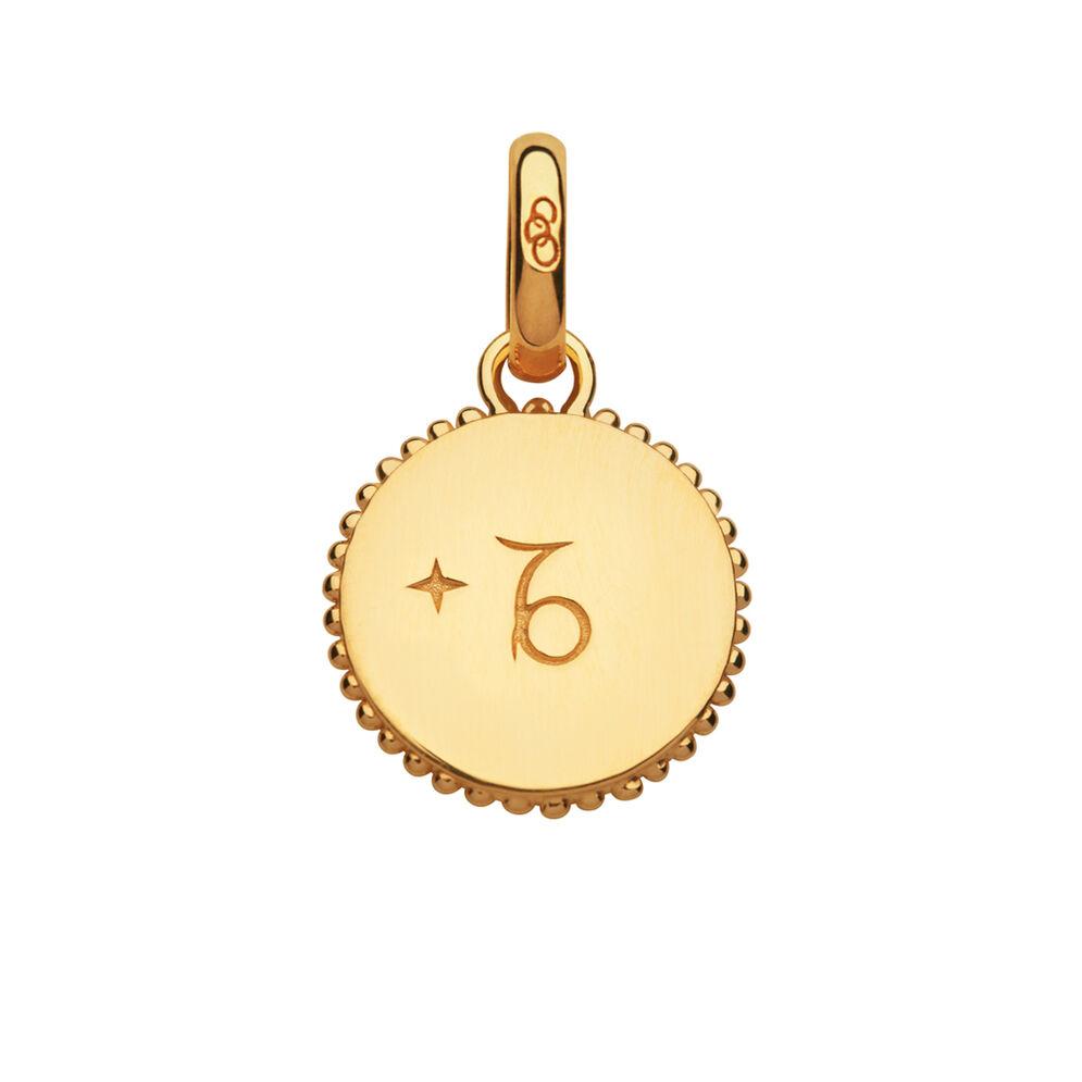 18kt Yellow Gold Vermeil Capricorn Zodiac Charm, , hires