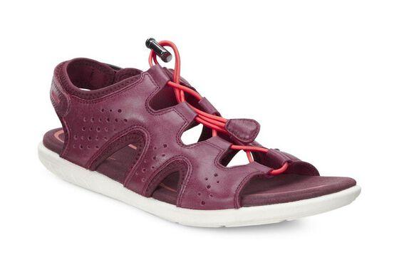 ECCO Bluma Toggle Sandal (MORILLO)