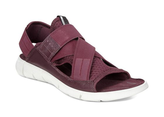 INTRINSIC Ladies Sandal (BORDEAUX/BORDEAUX)