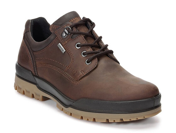 ECCO Track 6 GTX Plain Toe Lo  - color: COCOA BROWN/COFFEE (55738), size: 40 (COCOA BROWN/COFFEE)