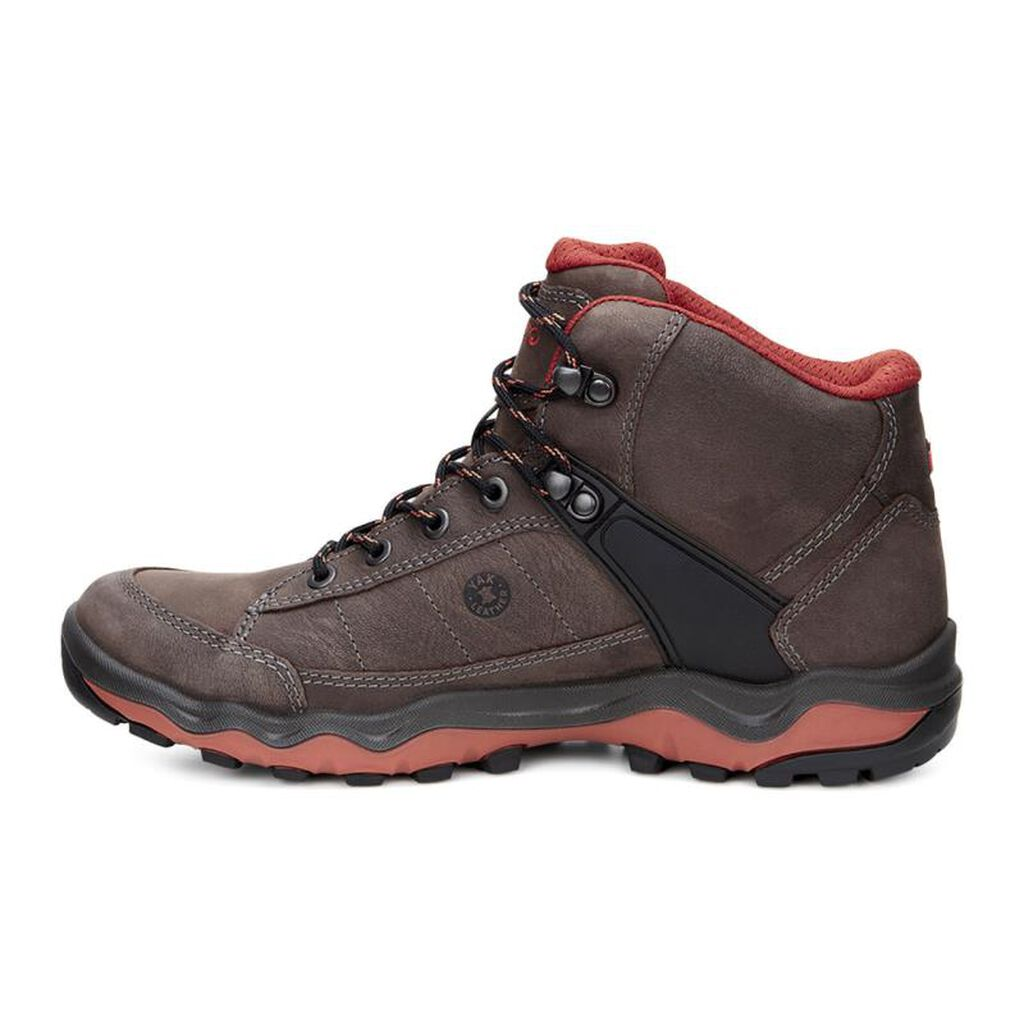 Where Can I Buy Ecco Shoes For Men