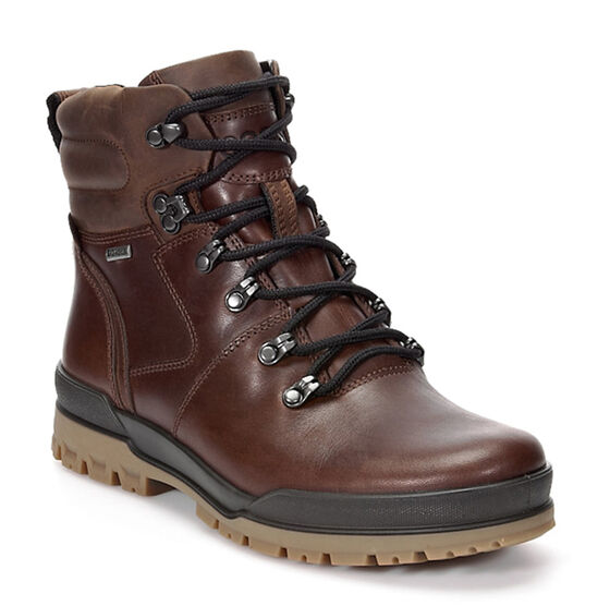 ECCO Track 6 GTX Plain Toe Hi (BISON/COCOA BROWN)