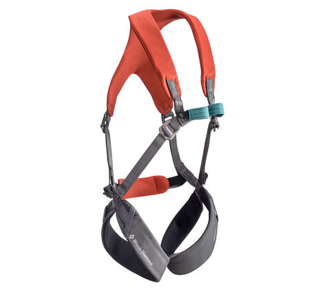 Momentum - Kid's Full Body Harness