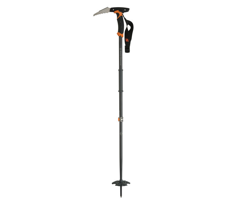 Whippet Ski Pole