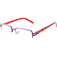 Fashion Reading Glasses with Matching Pink Leopard Case 2.75
