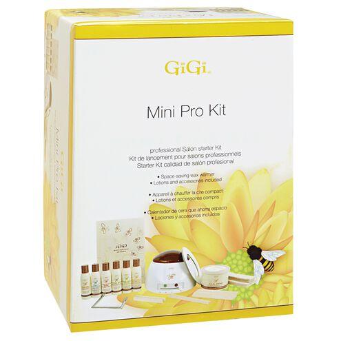 Mini Pro Waxing Kit