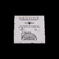 Destine Clear Cube Earrings 4mm