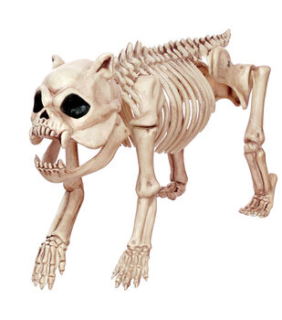 The Boneyard Hungry Hound Skeleton