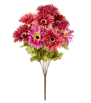 Blooming Autumn 17'' Spider Gerbera Daisy Bush-Fuchsia & Purple