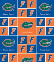 University of Florida NCAA  Cotton Fabric, , hi-res